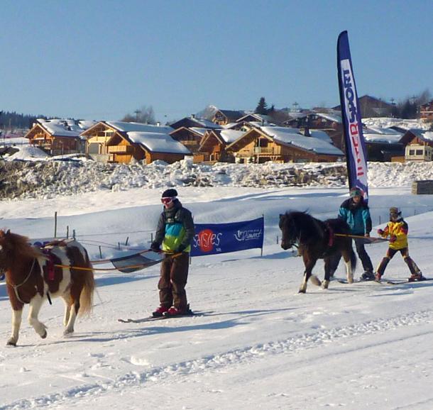 ski-jeoring-aux-saisies