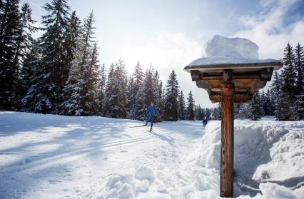 Le paradis du ski nordique (skating ou alternatif)