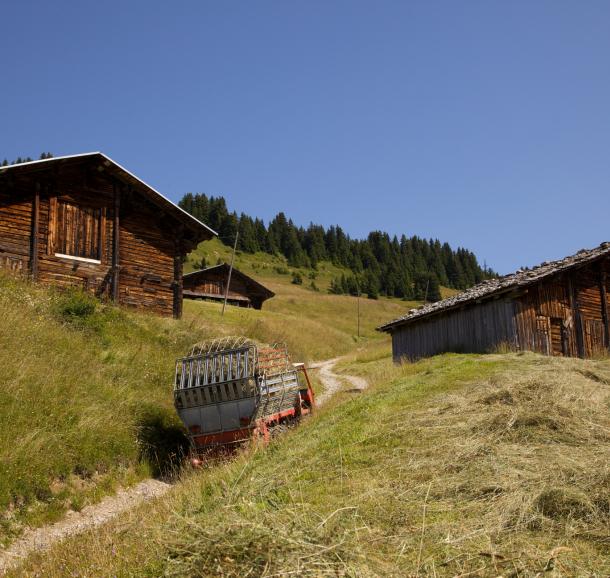 Le hameau des Pachons