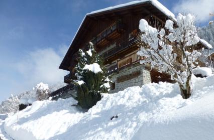 dmj02 chalet hiver