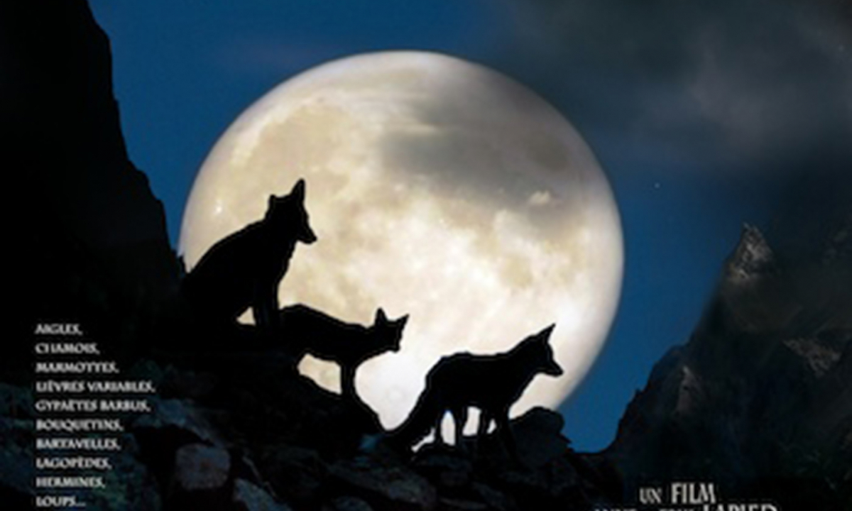 clan des renards