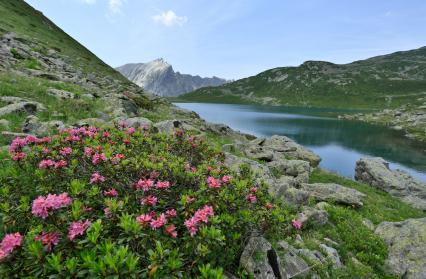 Le lac Jovet, au coeur de la Réserve Naurelle des Contamines
