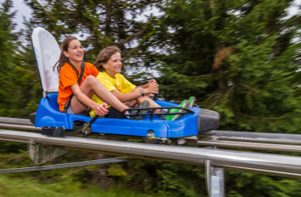 Mountain Twister - Luge d'été