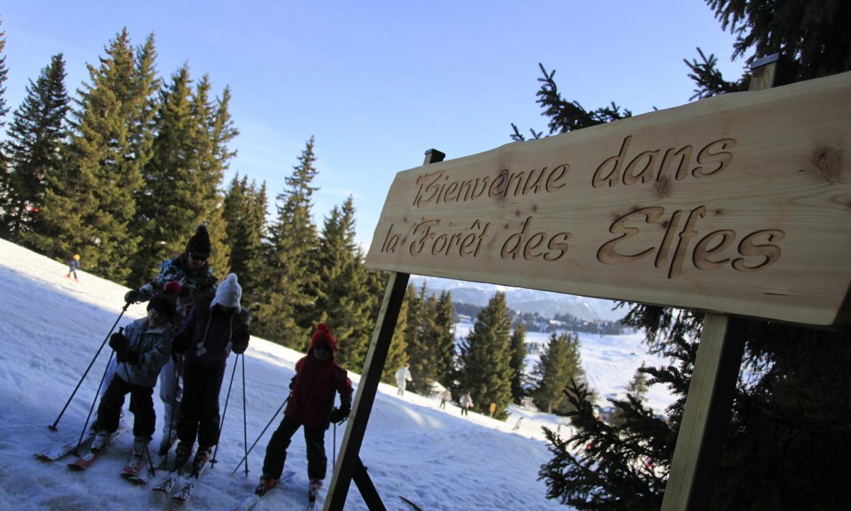 L'entrée de la forêt des elfes