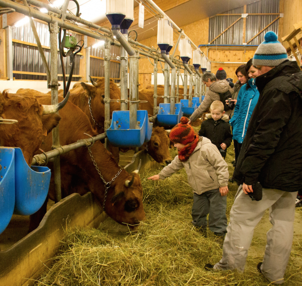 Découverte gourmande, visite à la ferme