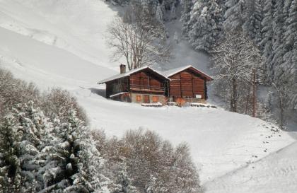 chalets_hiver