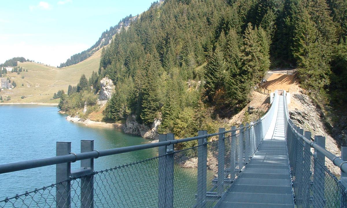 Lac et Passerelle de Saint Guerin