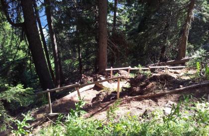 Sentier de 4 sous dans le bois de Pellaz