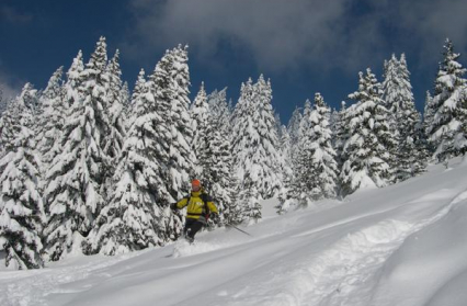 Ski en poudreuse aux Saisies