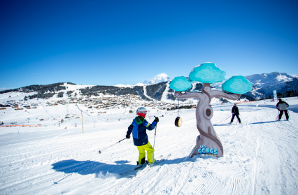 Slow ski
