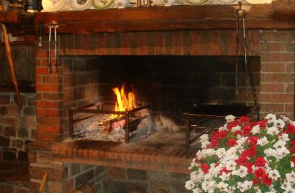 cheminee-grillades-la-bergerie